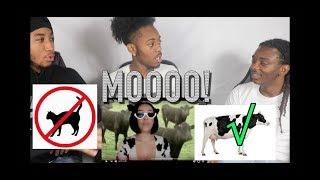 "Doja Cat - ""Mooo!"" (Official Video) REACTION!!"
