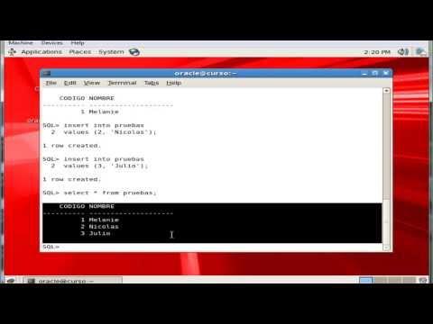 Oracle SQL comandos basicos