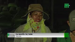 VTC14   Bà Rịa-Vũng Tàu: Bắt quả tang cơ sở  xả thải trộm ra môi trường