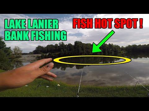 LAKE LANIER BANK FISHING I FOUND A FISH HOTSPOT!!!