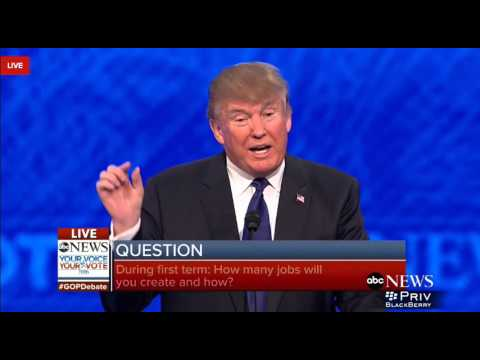 Q12 - Trump - How would you create jobs?