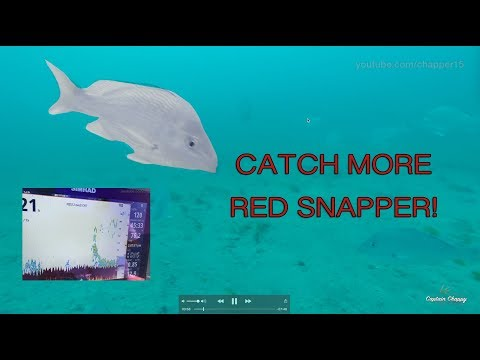 How To Find Red Snapper Stacks In The Gulf Of Mexico!
