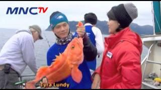 Download lagu 7 Monster Air Alaska - Mata Pancing MNCTV