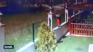"""Dangerous!!   """"German Shepherd"""" dogs attack on 9 Year-old-boy"""