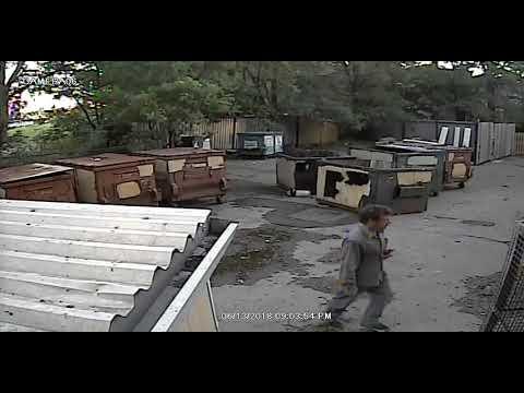 Toronto Police Service - YouTube