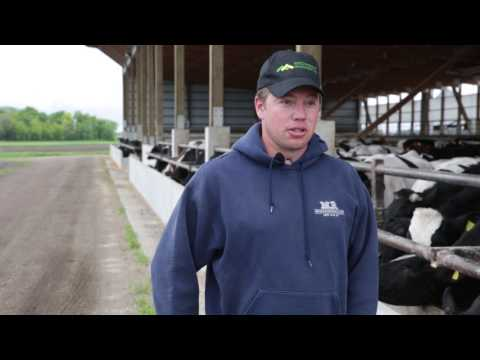 Matt Wendinger - Increased Feed Efficiency from Indoor Feeding Operation