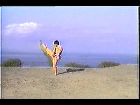 Võ Lâm Việt Nam - Bài số 11 - La Hán Ngũ Hành Quyền