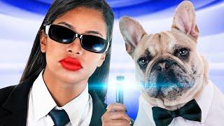 17 طريقة لتهريب الحيوانات الأليفة للكافيه / أفكار ومقالب مضحكة للحيوانات الأليفة