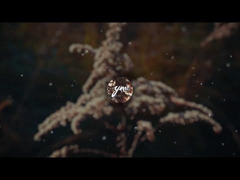 Delyno - One More Shot (feat. Andrei) [Simon Bichbihler Remix]