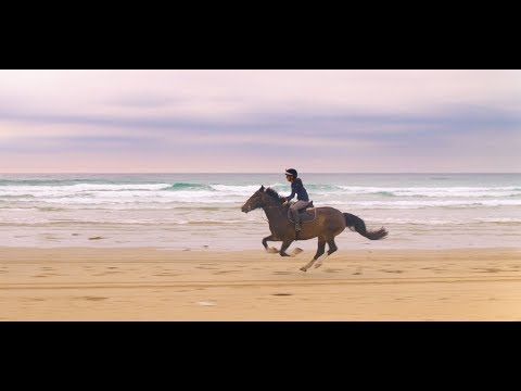 Wild Horse Riding on Perranporth Beach – Travel Channel