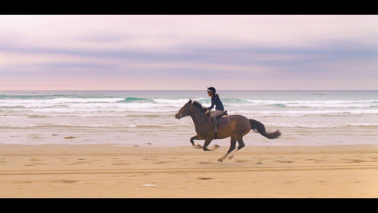Wild Horse Riding On Perranporth Beach