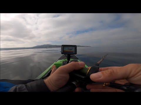Early Summer Yellowtail Fishing   Kayak Fishing La Jolla   Jig And Sonar Tips + Mystery Fish?
