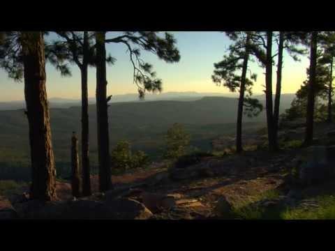Arizona State of Mind:  Rim Country