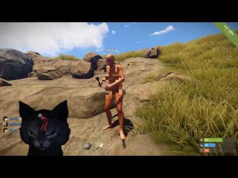 Zombie cat initial twitch test