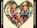 Qu'est-ce qu'être vegan? Pourquoi devenir vegan?