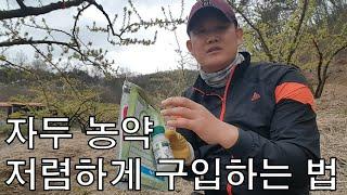 자두농사(4월 19일) 농약 살포(살충제, 살균제) /…