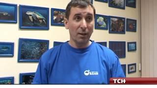 Обучение дайвингу в Туле - Дайв-центр «ОКеан»