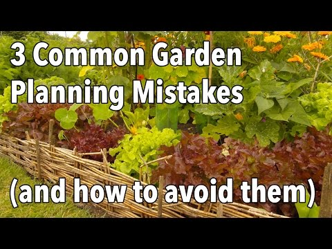 Common Garden Planning Mistakes And How To Avoid Them