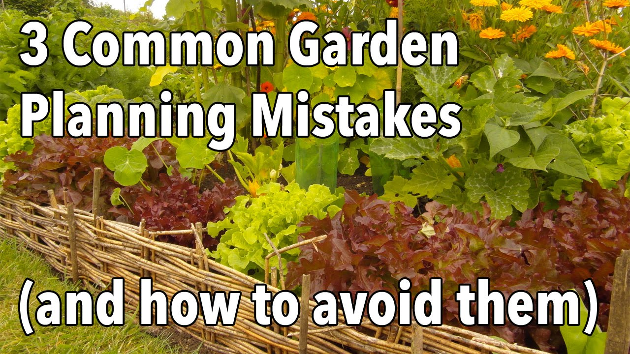 3 common garden planning mistakes and how to avoid them youtube - Gardening mistakes maintaining garden winter ...