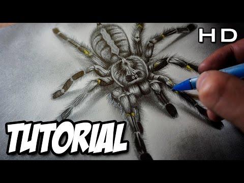 Cómo Dibujar una Araña Realista en 3D a Lápiz Paso a Paso - Tutorial