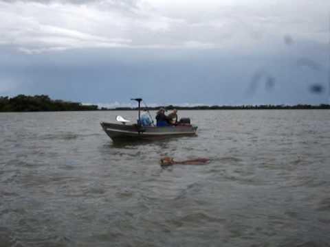 Cutucando a Onça com Vara de pescar Curta - Paulicéia - Rio Paraná - Biro e Zóio.MPG