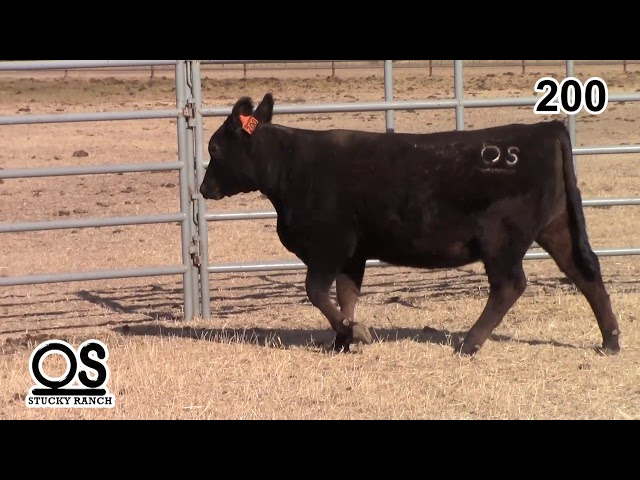 Stucky Ranch Lot 200