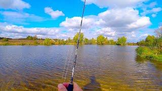 Взял НОВЫЙ СПИННИНГ и мелкие приманки и пошёл на пруд! Рыбалка в конце сентября! Осенний ультралайт.