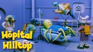 Hopital Hilltop - Plein les pattes S04E10 HD