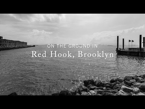 BT Vignettes // On the Ground in Red Hook, Brooklyn