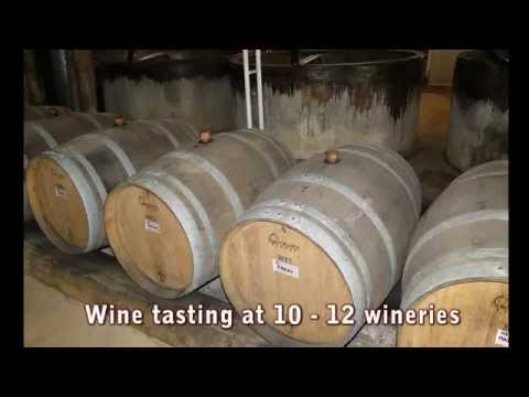 Hunter Valley (wine tasting tour) Private Guided Day Tour