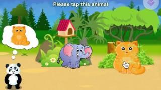 ActivePanda.Net - Toddler Preschool Activities