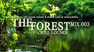 The Forest Chill Lounge Part 003 | Smooth Ambient & Chillout Tunes Continuous DJ Mix (Full HD)