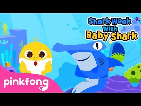 Meet the Shark Family   Shark Week with Baby Shark   Pinkfong Songs for Children
