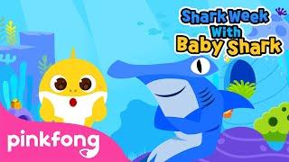 Meet the Shark Family | Shark Week with Baby Shark | Pinkfong Songs for Children