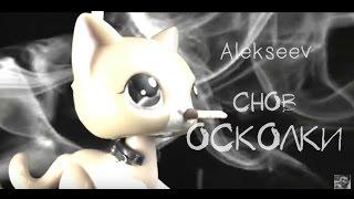 LPS: Снов Осколки ~ Music Video [Alekseev]