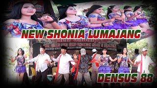 NEW SHONIA LUMAJANG - DENSUS 88. Live Bulujaran Kidul