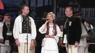 Vladuta Lupau, Tudor si Nicolae Furdui Iancu - cantec patriotic