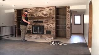 Mikka (siberian Husky) Puppy Camp Training Video