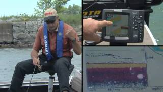 Colour Humminbird Sonars help you catch Sheepshead