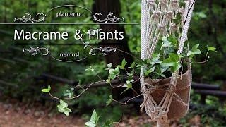 마크라메 플랜트행잉 만들기 / Macrame plant…