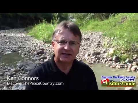Dinosaur Dig at Pipestone Creek Alberta VIDEO FEATURE