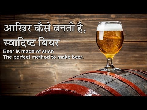 आखिर कैसे बनती है स्वादिष्ट बियर | The Perfect Method To Make Beer | Quiz20