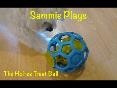 The Hol-ee Treat Ball SP #8