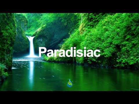 Surfers - Paradise Island