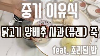 베이비 브레짜 이유식 마스터기 - 닭고기양배추사과(퓨레…