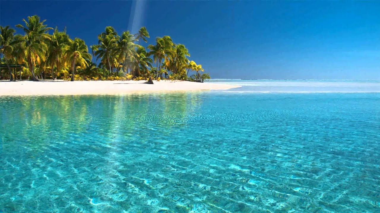 Tropical Island Beach Ambience Sound: Tropical Beach Animated Wallpaper Http://www