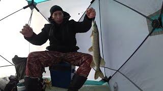 Зимняя рыбалка 2019  Ловля щуки и окуня