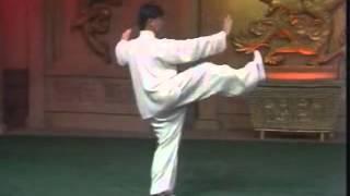楊軍太極拳103式