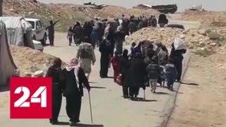 Сирия возвращается к жизни: беженцы нашли приют в Хомсе - Россия 24