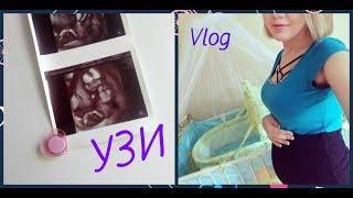 VLOG   УЗИ   Один день из жизни беременной      #блогер#беременность#узи#ТаняРайс